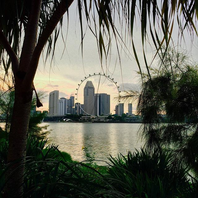 シンガポールに移住する場合、日本の年金や健康保険はどうしたらよいですか?